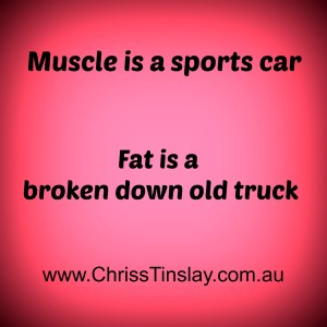 muscle is a sports car