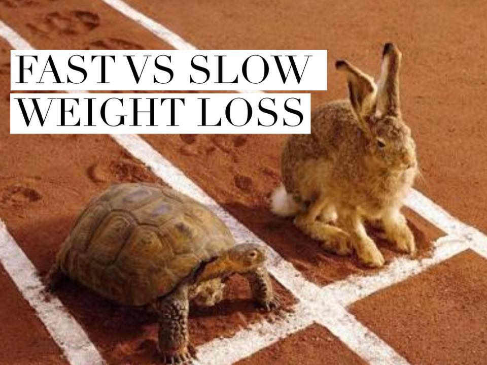Slow Weight Loss On Juice Fast : Which is better, Fast or Slow weight loss? You might be surprised. - ChrissTinslay.com
